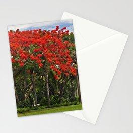Royal Poinciana Tree Stationery Cards