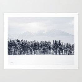 White winter Art Print
