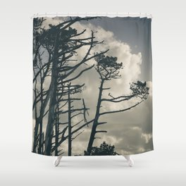 Pines 1 Shower Curtain