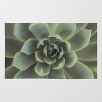 succulent Area & Throw Rugs featuring Succulent by Andrea Hurley
