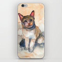 CAT #7 iPhone Skin