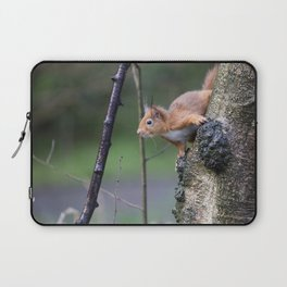 Red Squirrel 2 Laptop Sleeve
