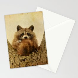 Transfixed Stationery Cards