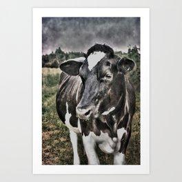 Melancholic Black White Dutch Cow Art Print