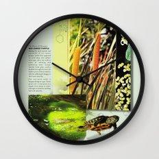 Red-Eared Turtle Wall Clock