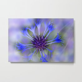 the beauty of a summerday -43- Metal Print