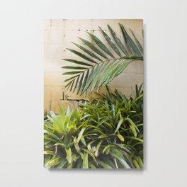 Palms & Bromeliads  |  The Plant Life Metal Print
