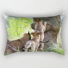 Cute 8 weeks old Malinois puppies Rectangular Pillow