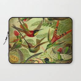 HUMMINGBIRD COLLAGE- Ernst Haeckel Laptop Sleeve