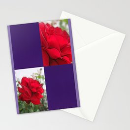 Red Rose Edges Blank Q9F0 Stationery Cards