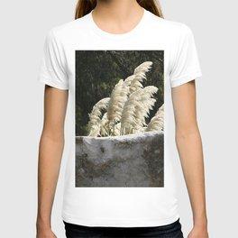 Flowering Pampas Grass Plumes T-shirt