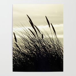 Swaying in the Breeze Poster