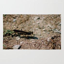 Cricket Closeup Rug