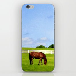 Summer Grazing iPhone Skin