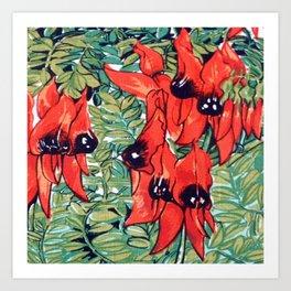 Vintage Australian Sturt's Desert Pea Flower Art Print