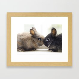 baby bunnies Framed Art Print