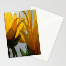 Sun 2 Stationery Cards