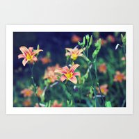 Orange Lillies Art Print