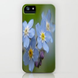 Close-up Forget Me Not - Blue Myosotis iPhone Case