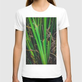green leaves texture background T-shirt