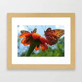 Two Butterflies (*Koinonia*) Framed Art Print