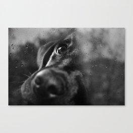 dog char Canvas Print