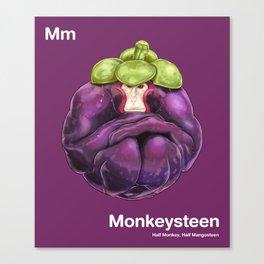 Mm - Monkeysteen // Half Monkey, Half Mangosteen Canvas Print