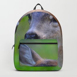 Sitka Black-Tail Fawn Backpack