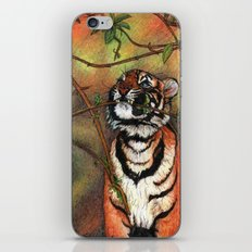 Baby tiger is playing iPhone Skin