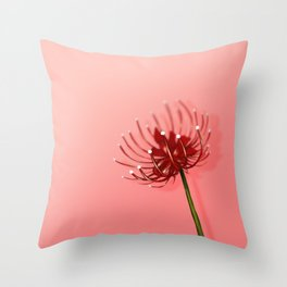 Spider Lily on a Pink background Throw Pillow