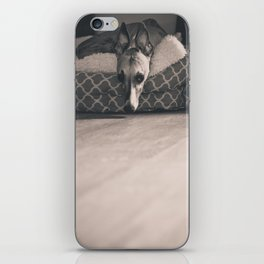 Whippet iPhone Skin