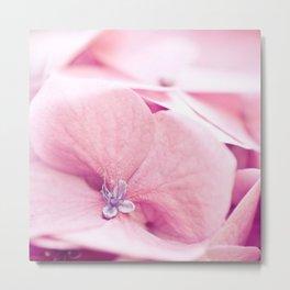 Sweetness of pink Metal Print