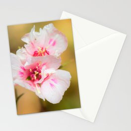 A Little Bit of Pink by Reay of Light Photography Stationery Cards