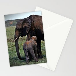 Wild African Elephants -Mother And Baby Stationery Cards