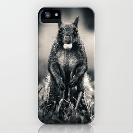 The Collector. Black and White Squirrel Photograph iPhone Case