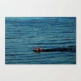 Swimmer Swimming Sea Sport Canvas Print