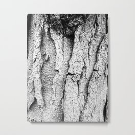 EmBark Metal Print