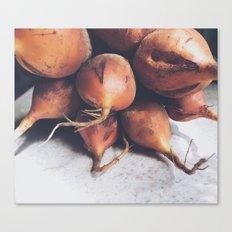 Golden Beets Canvas Print