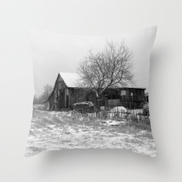 Winter #3 Throw Pillow