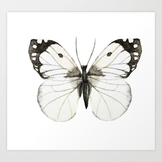 Butterfly 07 Art Print