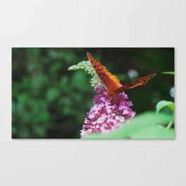 Springtime in Virginia I  Canvas Print