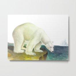 Polar Bear Illustration Drawing Metal Print