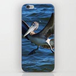 Pelican Landing iPhone Skin