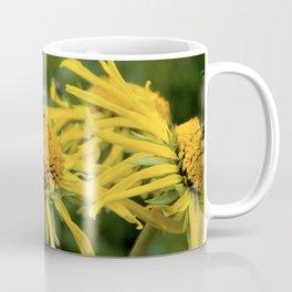 Honey Bee's Coffee Mug