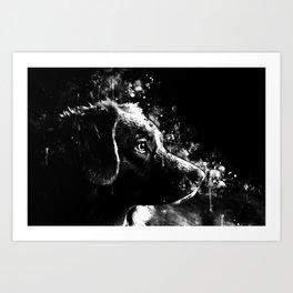 retriever dog ws bw Art Print
