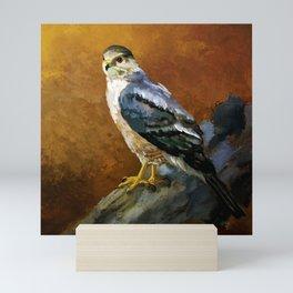 Cooper's Hawk Mini Art Print