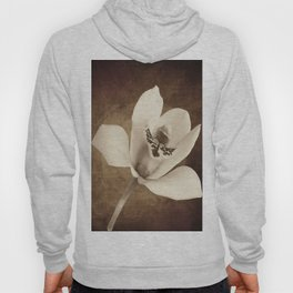 Vintage Flowers Digital Collage 12 Hoody