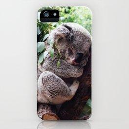 Cute Koala relaxing in a Tree iPhone Case