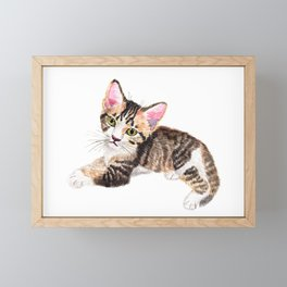 Brown Tabby Baby Cat Framed Mini Art Print