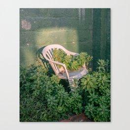 sunse(a)t Canvas Print